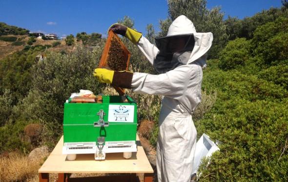 Η 14χρονη μελισσοκόμος