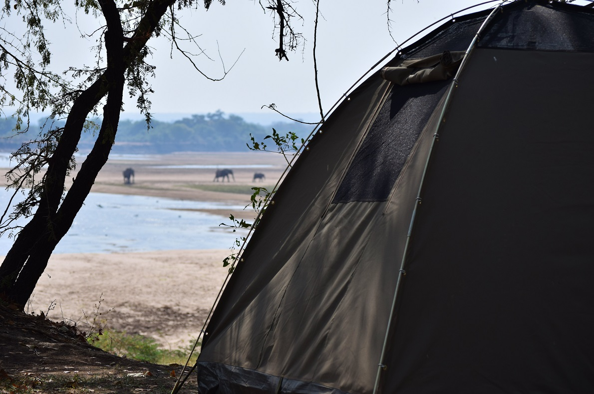 South Luangwa National Park, Zambia. Το camp site στο οποίο μείναμε ήταν ακριβώς δίπλα στον ποταμό South Luangwa, με ελέφαντες, μπαμπουίνους, ιπποπόταμους και φακόχοιρους (warthogs) ανάμεσα σε πολλά άλλα, να περνούν μέσα από το camping καθ' όλη τη διάρκεια της ημέρας. Το συνηθίσαμε τόσο γρήγορα, που δεν αργήσαμε να κάνουμε και τις απαραίτητες συστάσεις και γνωριμίες.