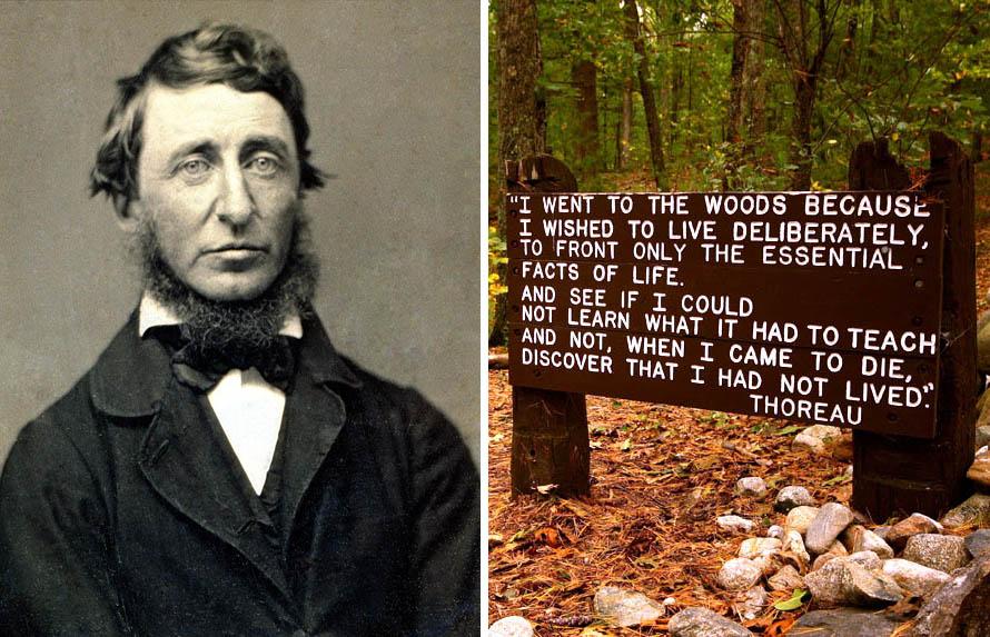 Το περίφημο απόσπασμα από το βιβλίο του Θορώ (όπου εξηγεί γιατί επέλεξε να ζήσει στη φύση) στο δάσος που έφτιαξε την καλύβα του, δίπλα στις όχθες της λίμνης Ουόλντεν, κοντά στο Κόνκορντ της Μασαχουσέτης. Photo credit: alex/flickr