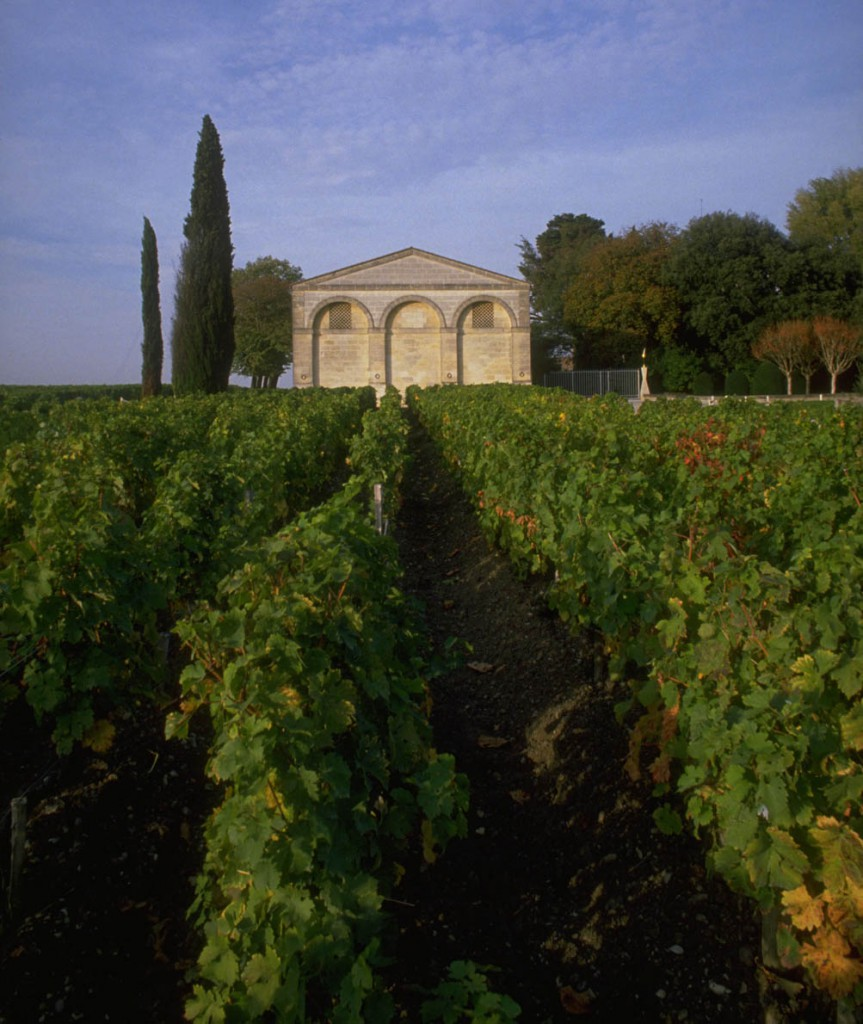 1989, Pauillac, France --- Vineyards at Chateau Mouton-Rothschild --- Image by © Robert Holmes/CORBIS