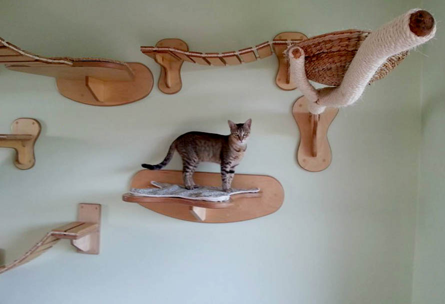 ceiling-furniture-for-cats-by-goldatze-gold-paw-10α