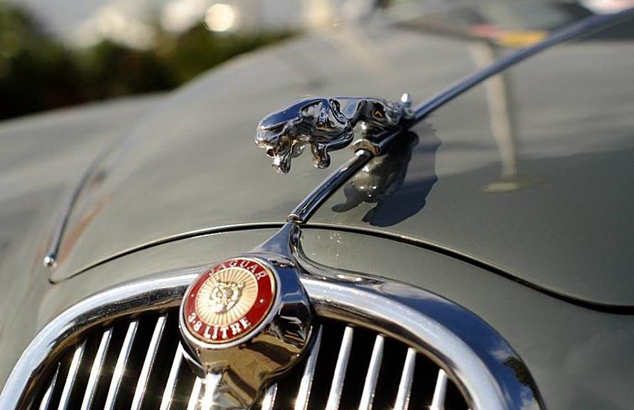 Jaguar_opt