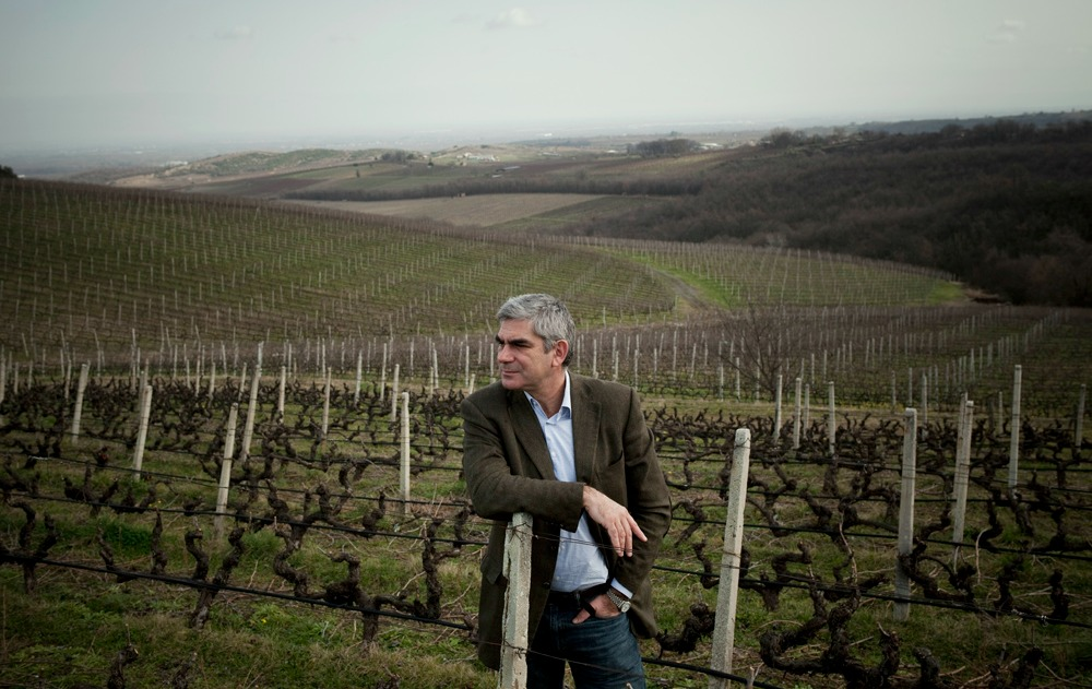 Naousa, Greece 2015 Stelios Boutaris, the managing director and owner of KIR-YIANNI vineyards in up Northern Greece.