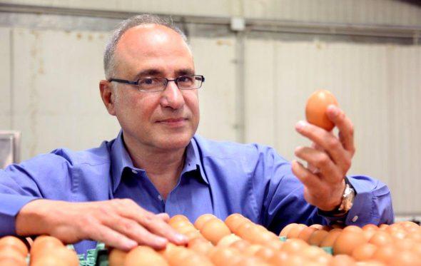 Ιωάννης Βλαχάκης, Πρόεδρος του ΔΣ των «Αβγών Βλαχάκη»