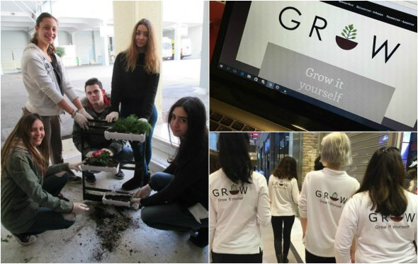 Grow: Μια ομάδα μαθητών έφτιαξε μια επιχείρηση που θα ήθελες να κάνεις κι εσύ