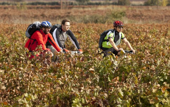 Ποδηλατώντας για το κρασί