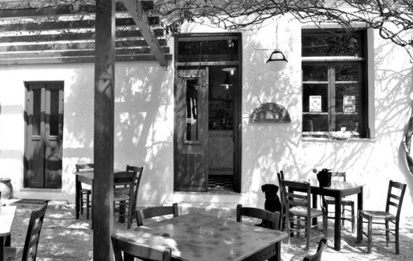 Στους Άνυδρους, στη νότια Κρήτη: Η γαστρονομία ως προορισμός
