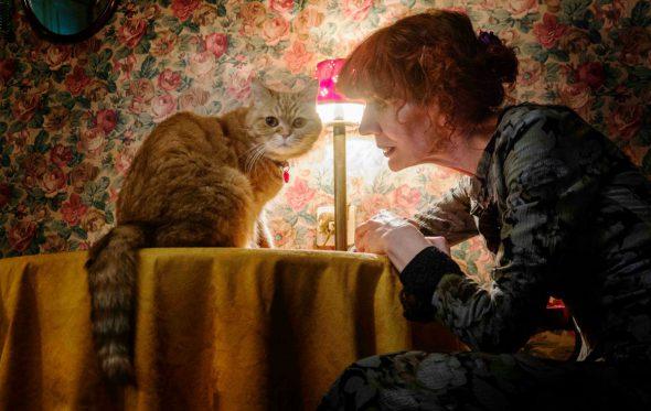 Ζυράννα Ζατέλη: Πέντε όνειρα με γάτες