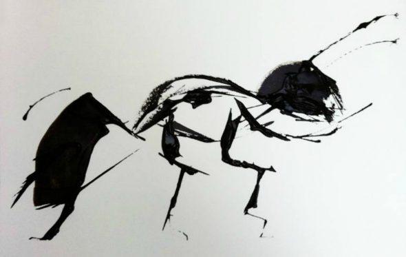 Οι ποιητές για το μυρμήγκι