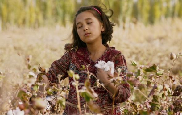 22o Διεθνές Φεστιβάλ Κινηματογράφου Ολυμπίας: μια πολύχρωμη γιορτή για τα παιδιά