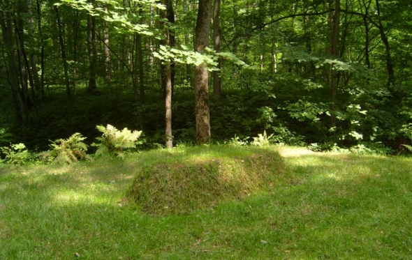 Στέφαν Τσβάιχ: «Η συγκλονιστική απλότητα του τάφου του Τολστόι»