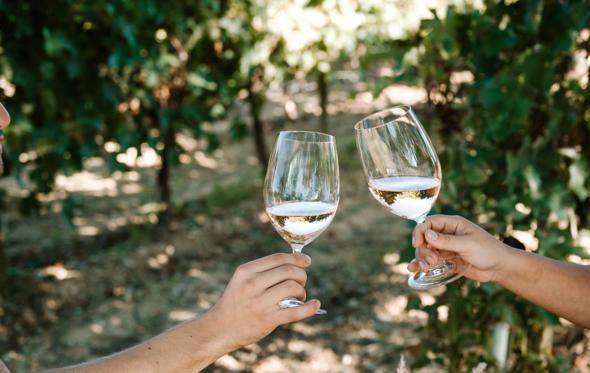 Τι άλλο έχει μέσα το κρασί εκτός από…κρασί;