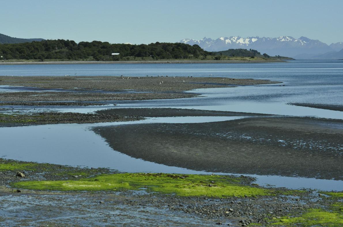 Μετά την παλίρροια στις βόρειες ακτές.