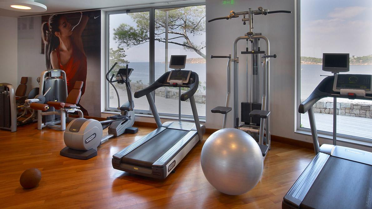 Arion-Gym