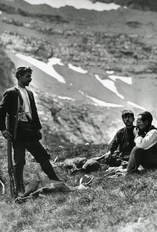Boissonnas-Kakalos- Bauvy