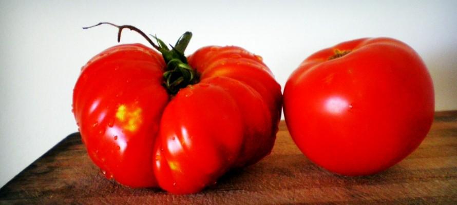 «Η ντομάτα από τον κήπο και η ντομάτα υδροπονίας –και μάλιστα μετά από 20 μέρες στο παράθυρό μου. Μόνο αλλάζοντας τις ανάγκες μας θα αλλάξουμε και το βιομηχανικό σύστημα που τις υπηρετεί», γράφει ο Σωτήρης Λυμπερόπουλος.