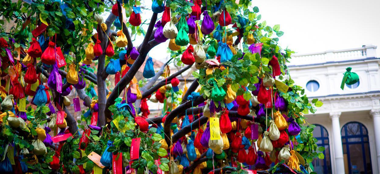 Πρόκειται για ένα μοναδικό, παγκοσμίως, παραδείσιο δέντρο. Το μόνο που χρειάζεται να κάνουν οι πολίτες είναι να σηκώσουν το χέρι τους και να πάρουν χρήματα.