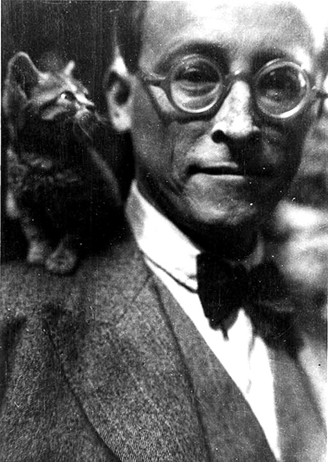 cat-gide