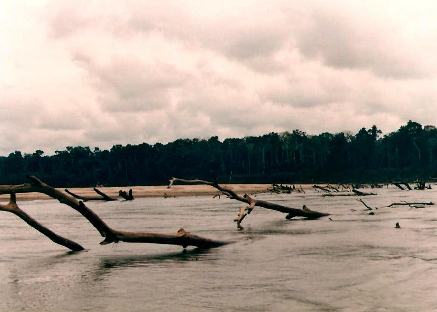 Ποταμός Madre de Dios. Φωτό Κ.Γκόφας 1988