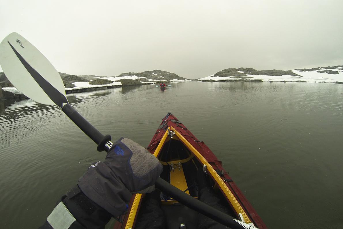 Kayaking στα υπήνεμα νερά της Ανταρκτικής Χερσονήσου