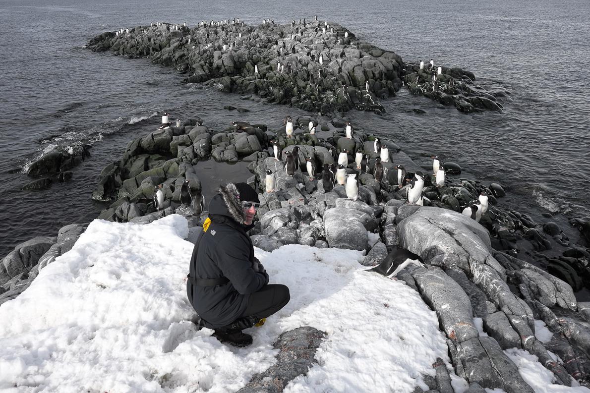 Νο 1 κανόνας για τον επισκέπτη της Ανταρκτικής είναι ο σεβασμός των ζώων και η διατήρηση του ευαίσθητου περιβάλλοντος